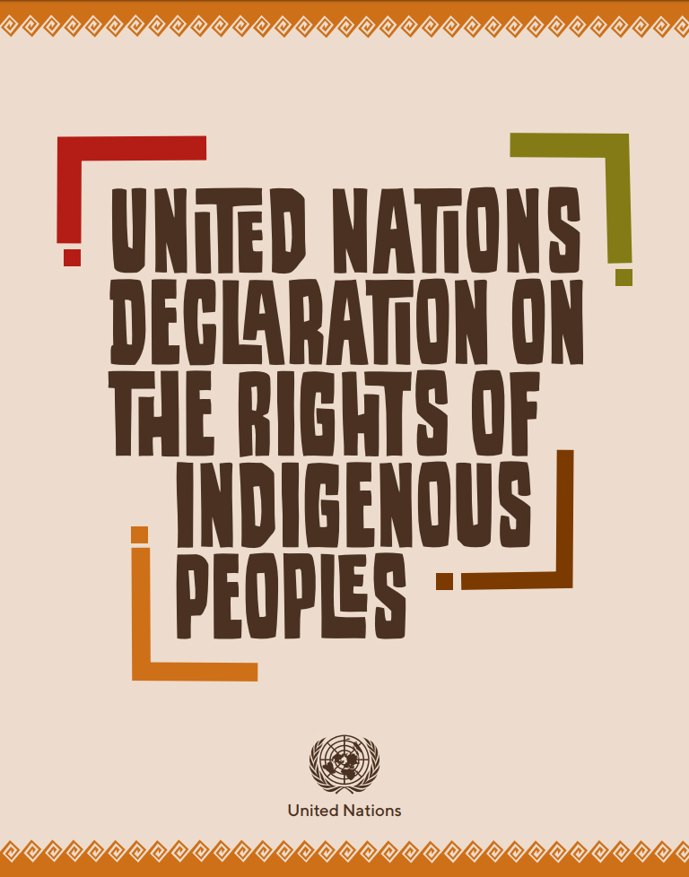 UN Declaration on the Rights of Indigenous Peoples_PDF Cover image