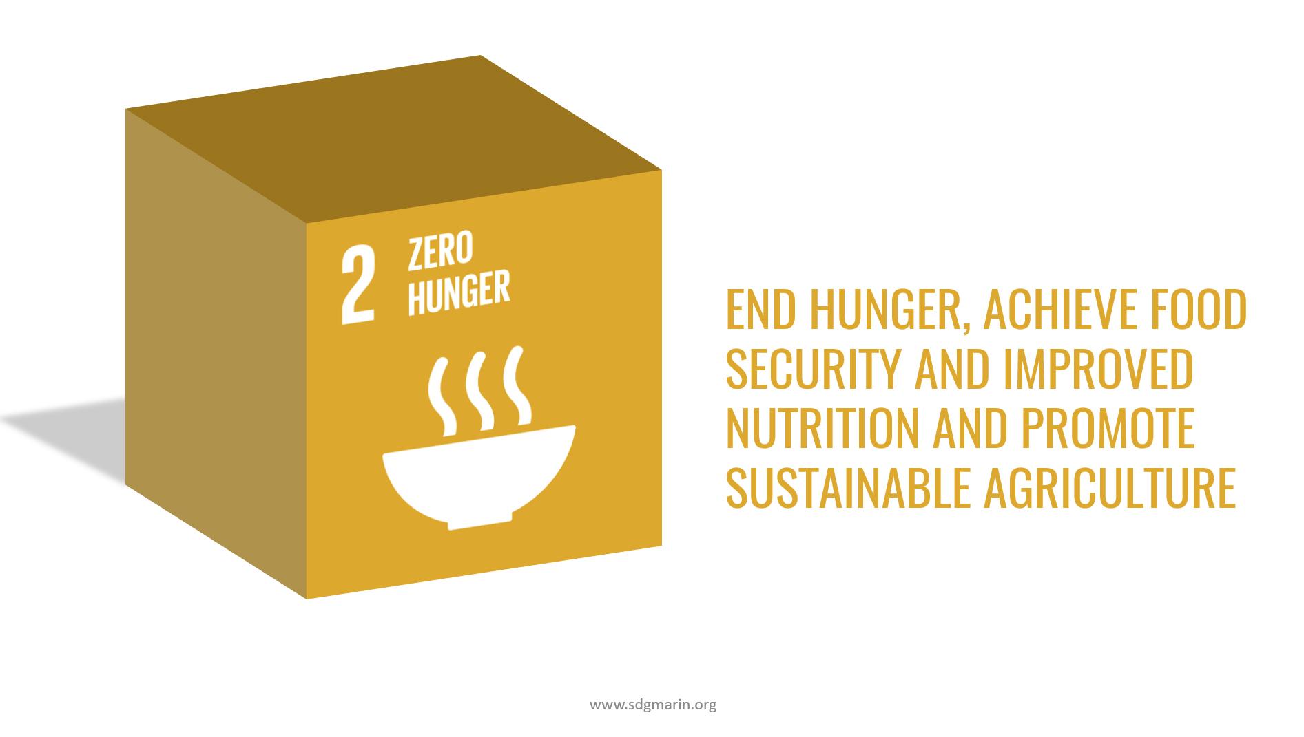 UN SDG #2 Zero Hunger 3D image with Text