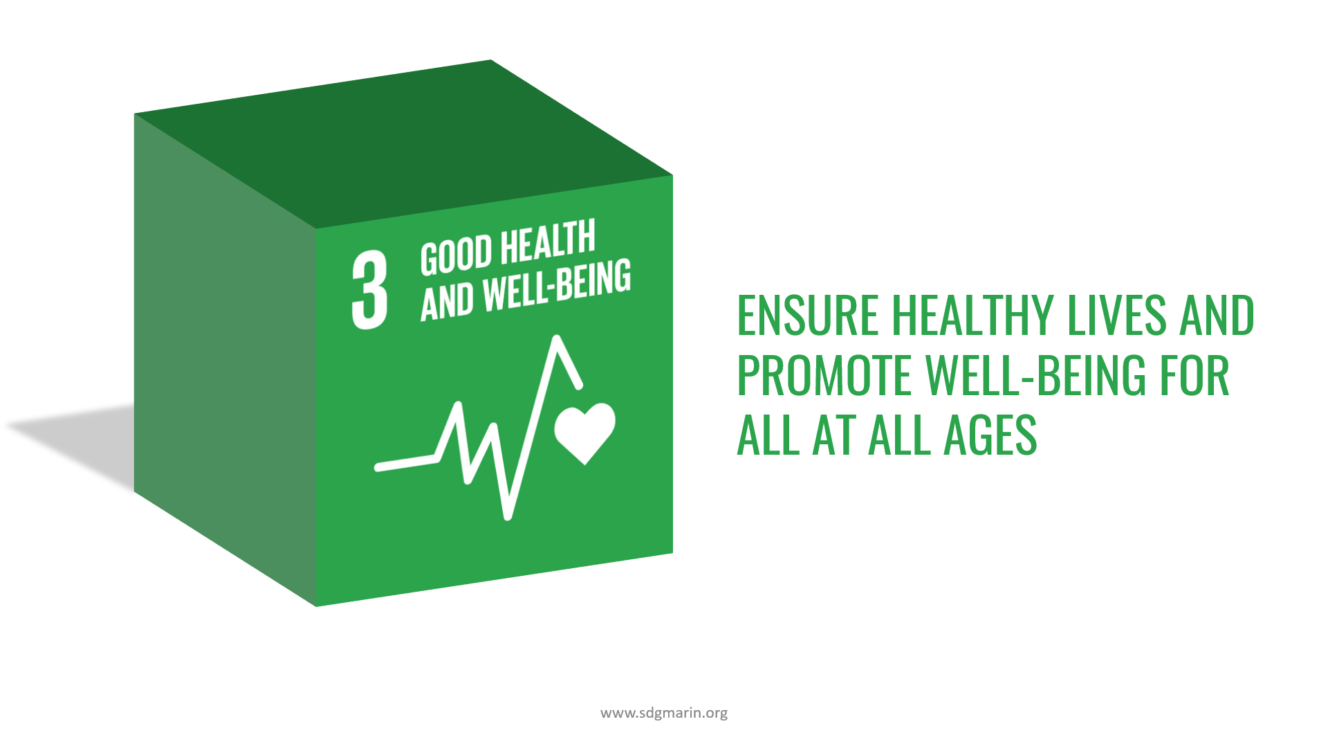 UN SDG #3 Good Health and Well-Being 3D image with Text