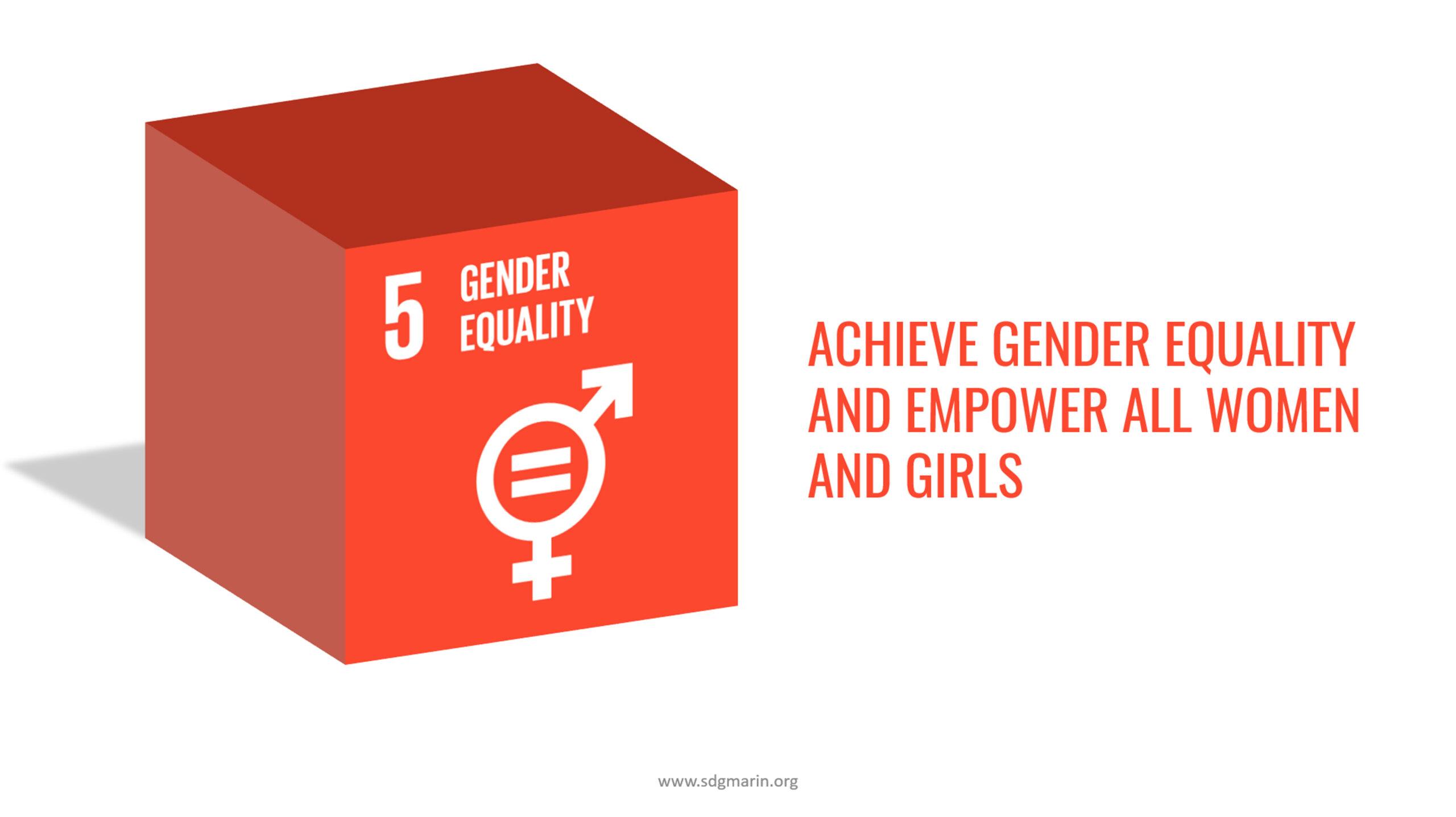 SDG #5 Gender Equality 3D Cube